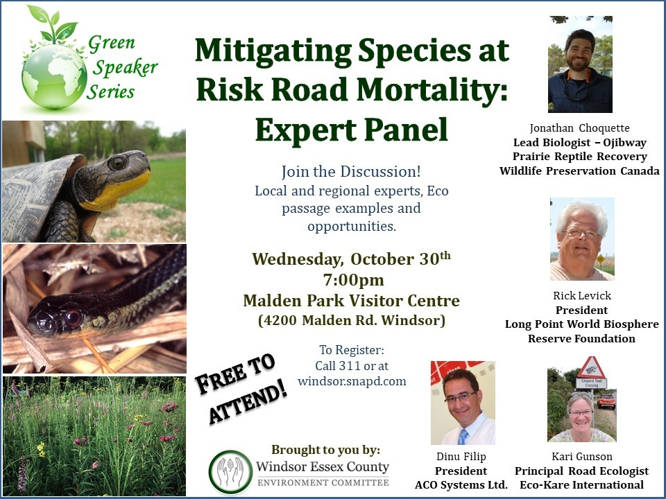 Mitigating Species at Risk Road Mortality